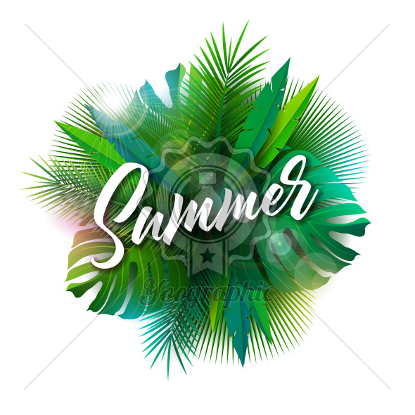 Summer Illustration with Typography Letter and Tropical Plants on White Background. Vector Holiday Design with Exotic Palm Leaves and Phylodendron for Banner, Flyer, Invitation, Brochure, Poster or Greeting Card. - Royalty Free Vector Illustration