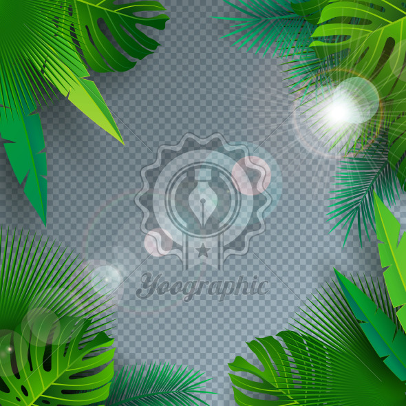 Vector Summer Illustration with Tropical Palm Leaves on Transparent Background. Exotic Plants and Sunlight for Holiday Banner, Flyer, Invitation, Brochure, Party Poster or Greeting Card. - Royalty Free Vector Illustration