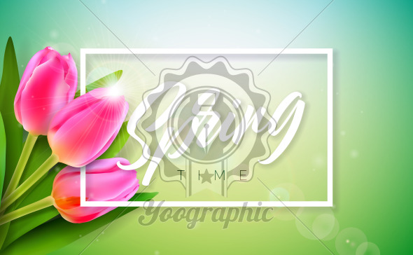 Vector Illustration on a Spring Nature Theme with Beautiful Tulip Flower on Green Background. Floral Design Template with Typography Letter for Banner, Flyer, Invitation, Poster or Greeting Card. - Royalty Free Vector Illustration