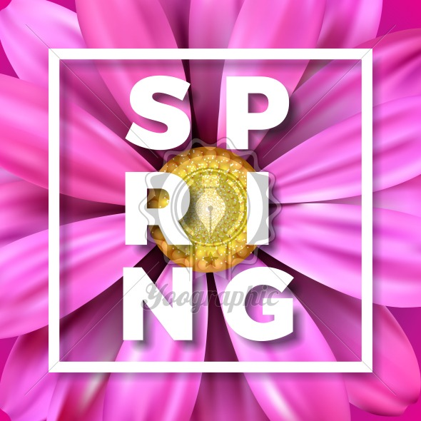 Vector spring illustration with beautiful colorful flower on Pink background. Floral design template with typography letter for greeting card or promotional banner. - Royalty Free Vector Illustration
