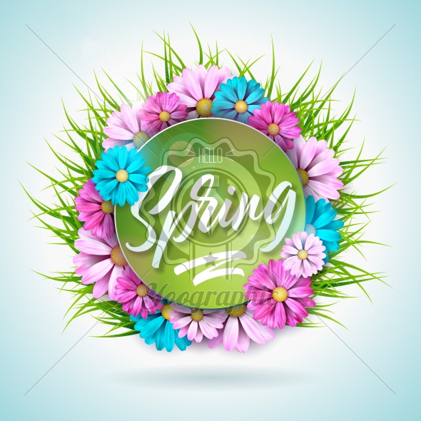 Spring nature design with beautiful colorful flower on green grass background. Vector floral design template with typography letter. - Royalty Free Vector Illustration