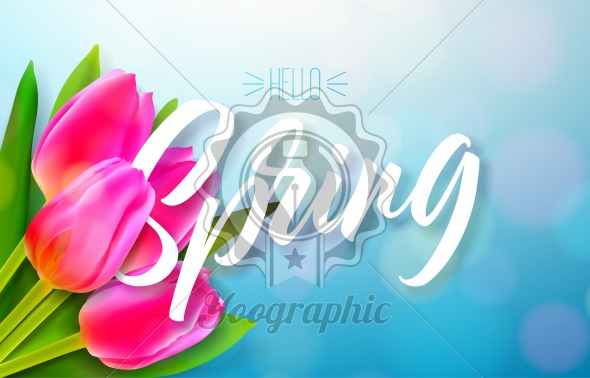 Hello spring nature design with beautiful tulip flower bouquet on shiny blue background. Vector floral design template with typography letter. - Royalty Free Vector Illustration